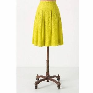 Anthropologie Citron Lace Skirt HD in Paris